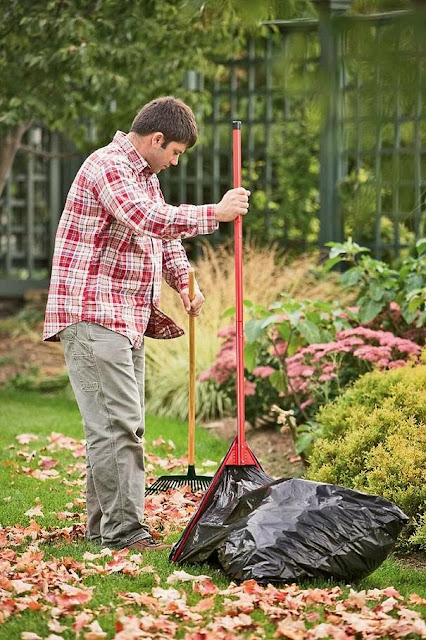 Yard Cleaning Tools and Gadgets (10) 9