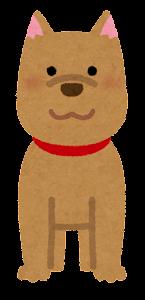 いろいろな角度から見た犬のイラスト(前姿)