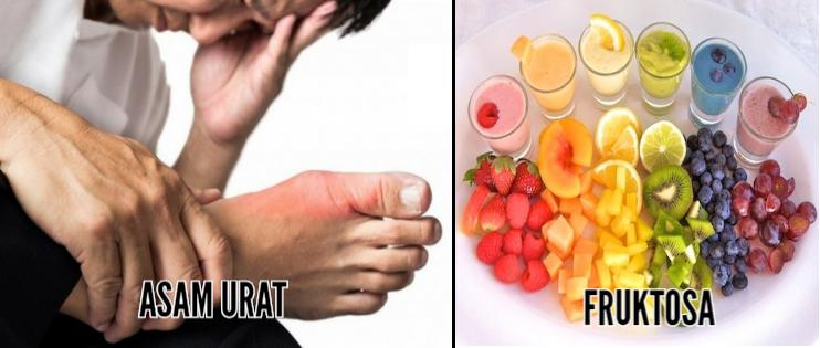 Fruktosa Dengan Asam Urat