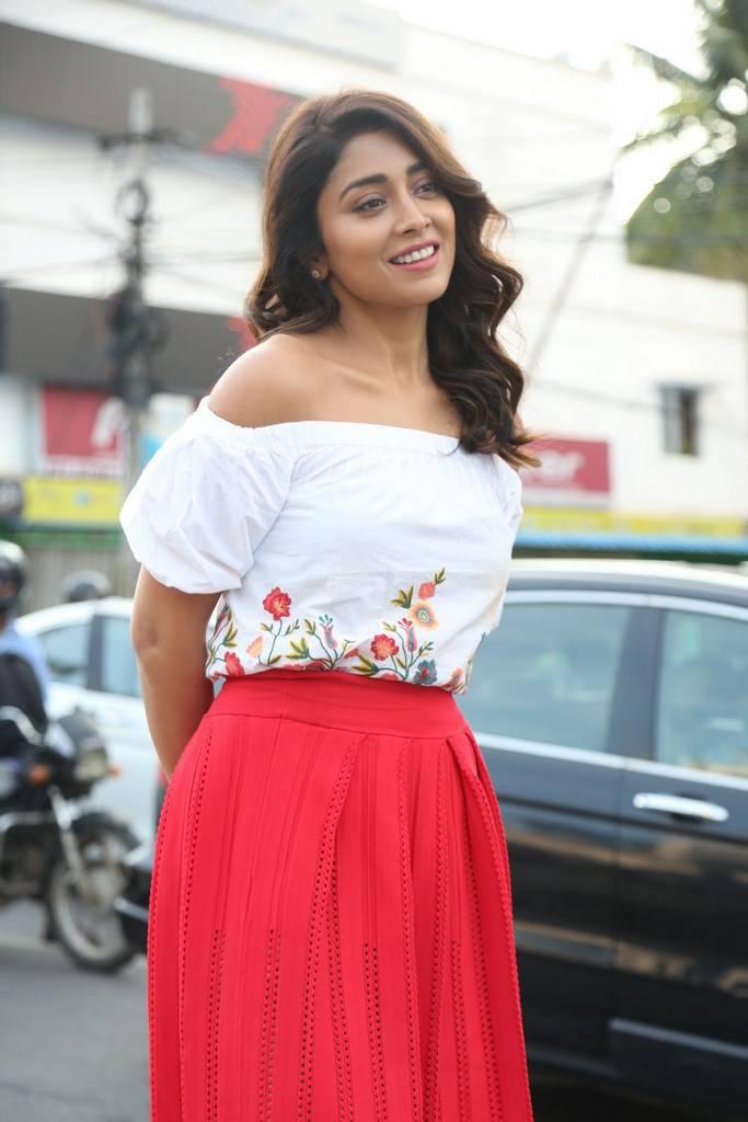 Shriya Saran At Paisa Vasool Movie Interview Stills