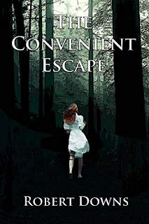 The Convenient Escape - a Thriller by Robert Downs