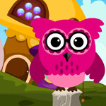 Games4king Pink Owl Rescue 3