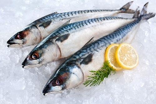 Alimentation et santé : 3 raisons de manger du maquereau, poisson oméga-3, vitamine