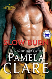romance novel cover, Pamela Clare, Slow Burn, Contemporary