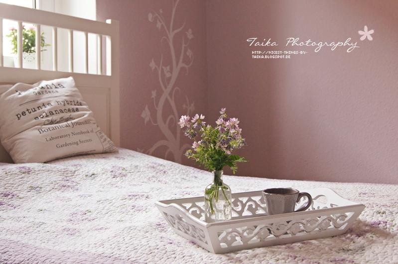 wohnzimmer design wandfarbe grau. Black Bedroom Furniture Sets. Home Design Ideas