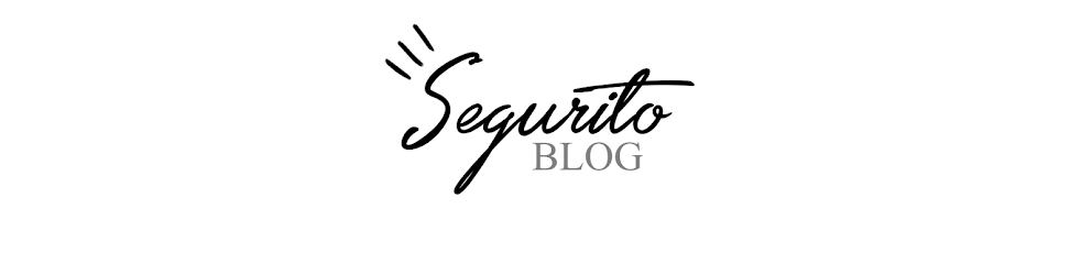Segurito Blog