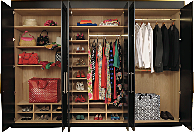 Foundation dezin decor modern wardrobe inside details for Wardrobe interior designs for girls