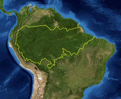 facts about the amazon rainforest brazil