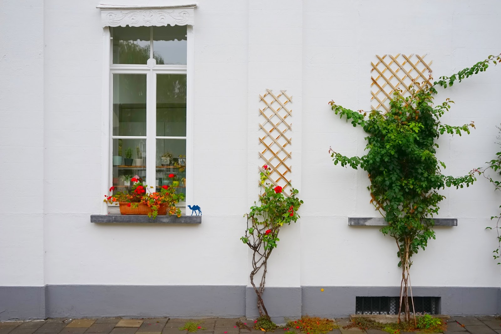 Le Chameau Bleu  -Blog Voyage Gand Belgique - Gand Tourisme -  Mur de Gand Belgique Charme de la ville de Gand