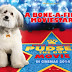 "[MOVIE] ""Pudsey: The Movie"" First Trailer Revealed!"