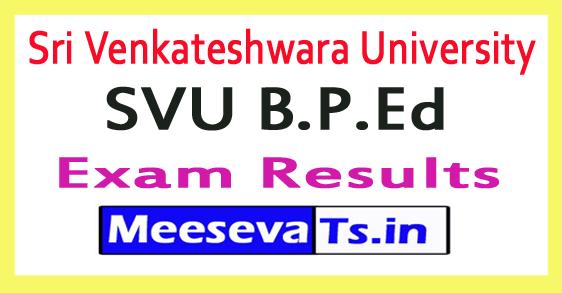 Sri Venkateshwara University SVU B.P.Ed Exam Results 2017