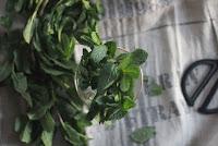 recetas con hierbabuenas
