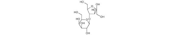 Laktulosa diurai oleh kuman usus besar terutama menjadi asam laktat Laktulosa