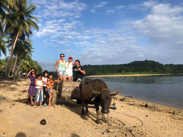 Scuba diving, UNDERWATER PHOTOGRAPHY, BICOL, DIVE MANTA BOWL, DIVE TICAO, DIVE PHILIPPINES, PAPARAZSEA