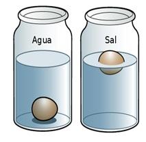 Resultado de imagen de experimento del huevo flota