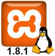 Ubuntu 13.04 manual