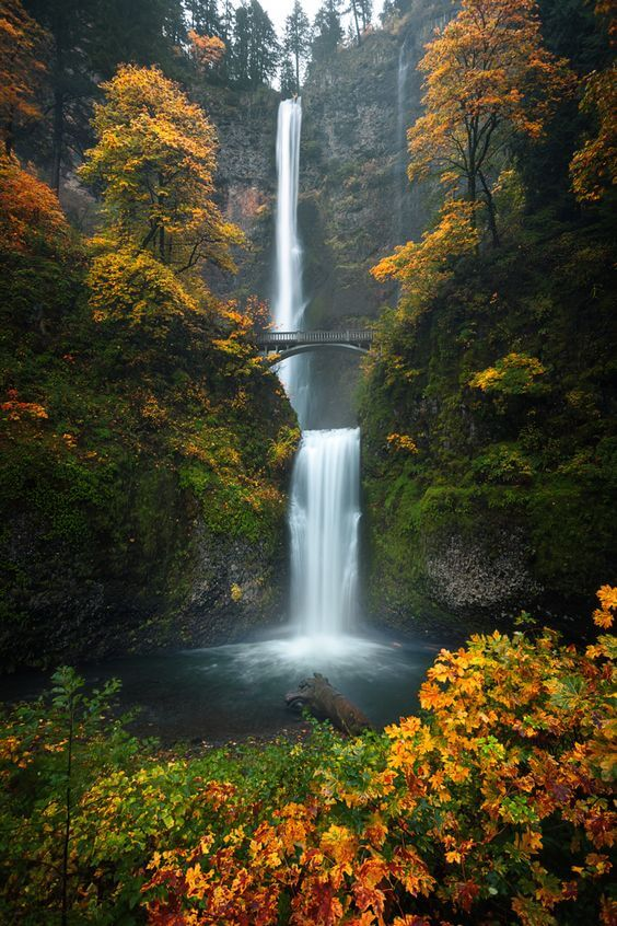 The Multnomah Falls in the Columbia River Gorge