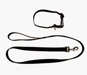Black set of collar and leash with embroidery