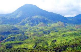 Jalur Pendakian Gunung Bukit Tunggul