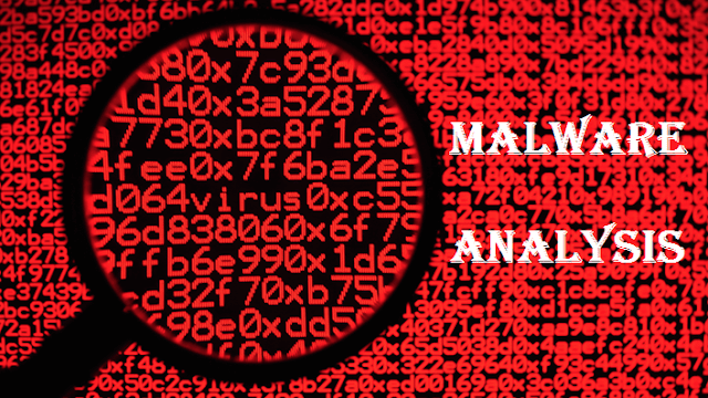 The Zoo A Project That Allow Malware Analysis