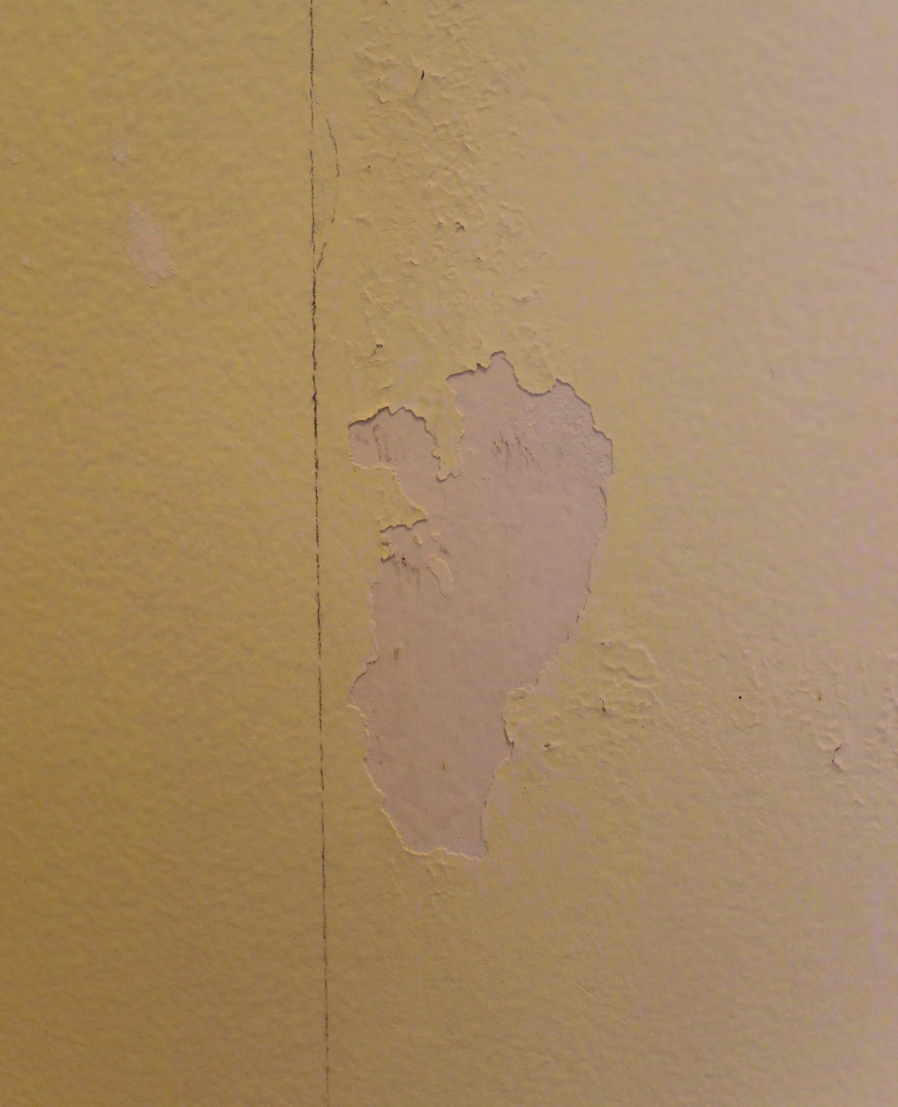 Painting Over Wallpaper Glue Be Sure To Do This First Driven By