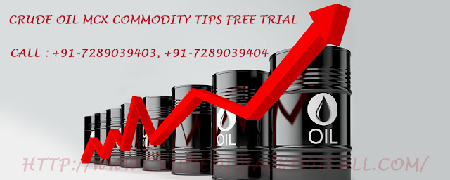 Accurate MCX Crude Oil Tips to Get Huge Financial Returns