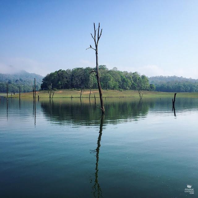santuario Periya en Kerala India