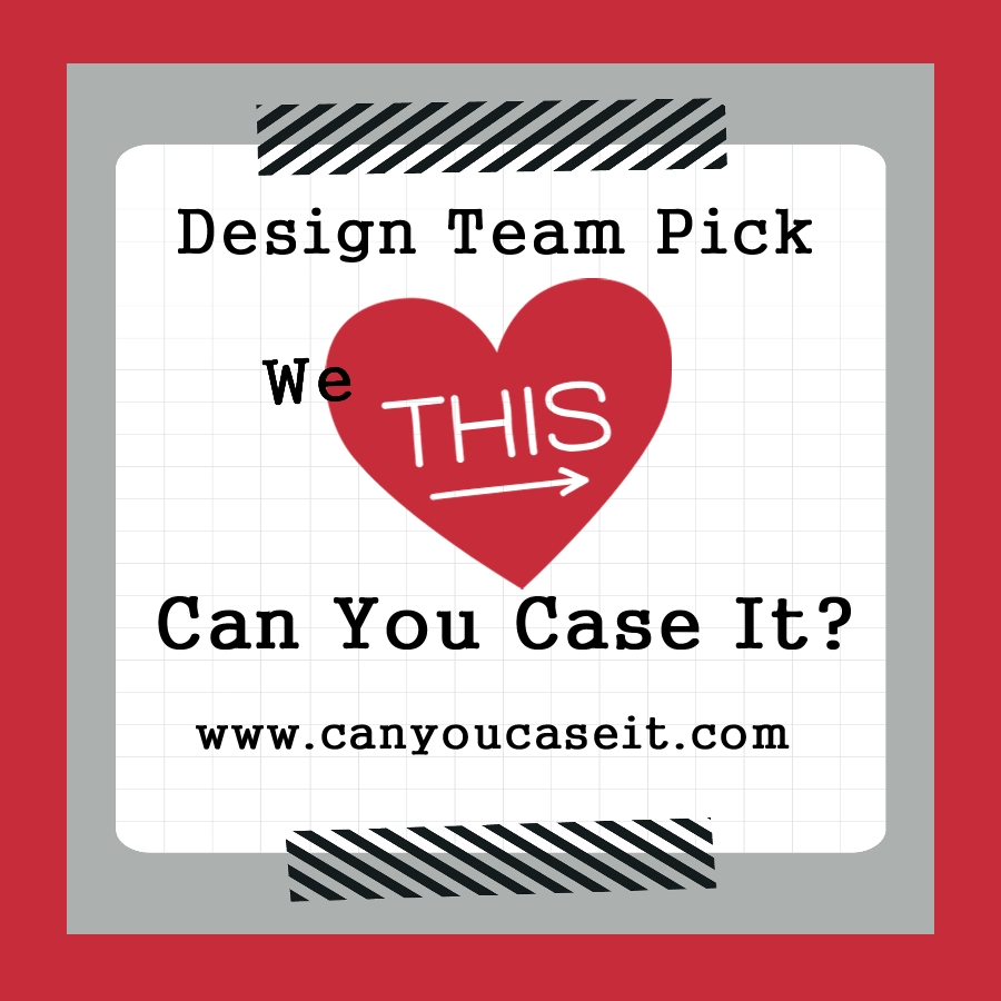 Can You Case it Design Team Pick
