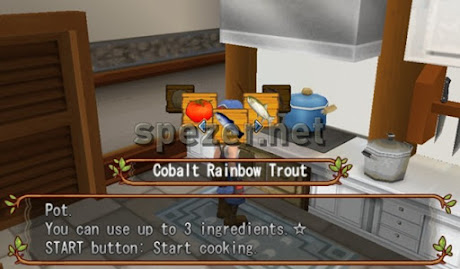 Memasak Game Harvest Moon Hero of Leaf Valley