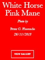 Vogue Italia White Horse Pink Mane by Avianquest a.k.a. Peter C. Florendo
