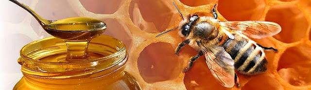 Endulzante saludable: la miel y sus beneficios.