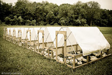 Have You Seen These Nifty Chicken Tractors?