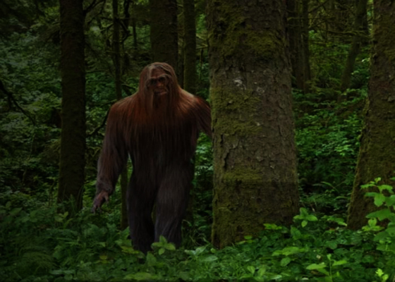Arkansas Bigfoot Encounter Deeply Haunts Eyewitness