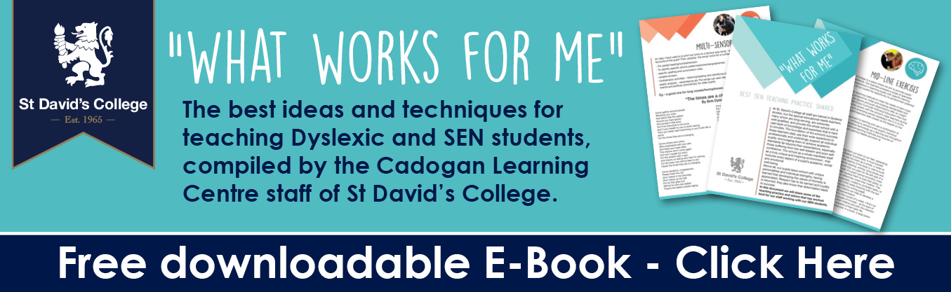 Download this SEN e-book from St David's College.
