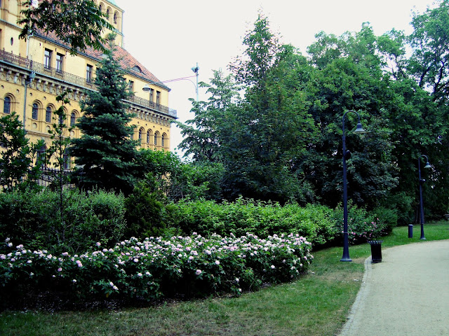 Zaczarowany ogród we Wrocławiu. Spacer po Wrocławiu. Park.