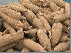 http://brimhome.blogspot.com/2014/01/how-to-process-cassava-into-flour.html