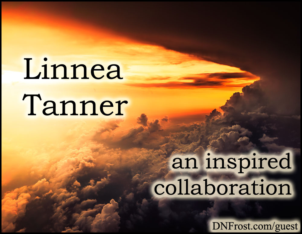 Linnea Tanner: trove of ancient Celtic symbolism http://www.dnfrost.com/2015/05/apollos-raven-resource-inspiration.html An inspired collaboration by D.N.Frost @DNFrost13 Part 1 of a series.