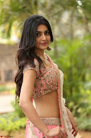 Avantika Mishra in Beautiful Peach Ghagra Choli 288.jpg