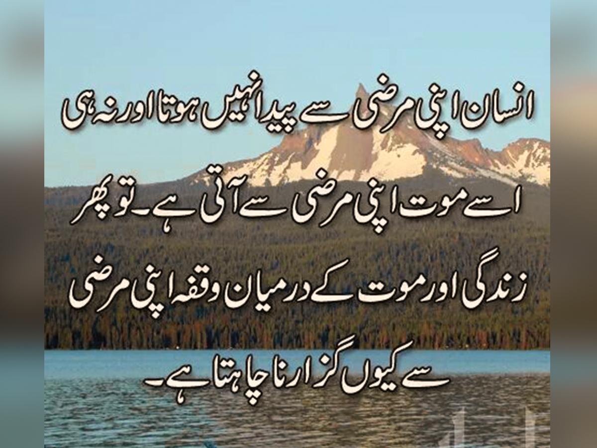 9+ Beautiful Quotes On Zindagi in Urdu Images - Urdu Thoughts