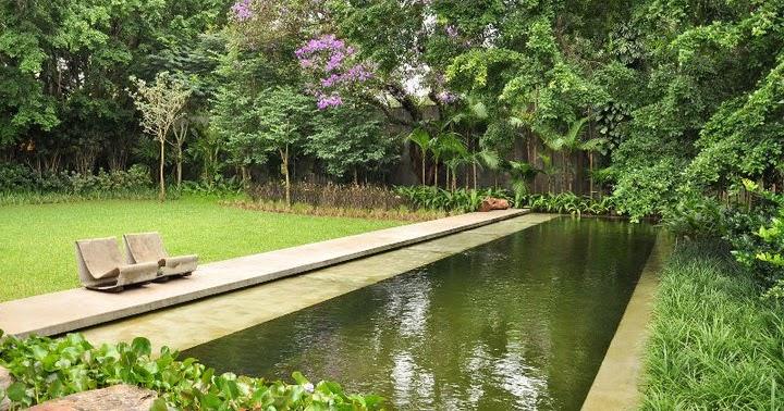 Revolu o no quintal especial piscinas naturais parte 1 for Filtro piscina natural