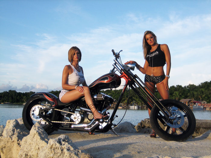 custom harley davidson parts: best parts for harley davidson sportster