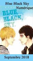 http://mangaconseil.com/manga-manhwa-manhua/netcomics/boy's-love/blue-black-sky/