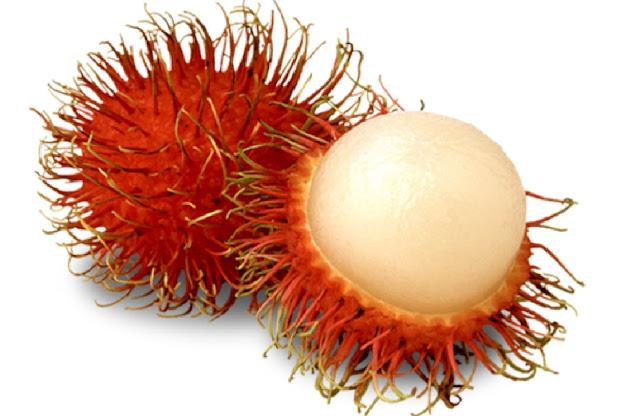 http://www.katasaya.net/2016/07/buah-eksotis-hanya-ditemukan-di-asia.html