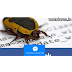 Facebook Messenger attacked by a Bug-how to repair it,full information -Confirm by TECHDARES