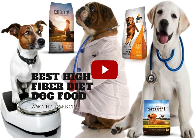 High fiber diet dog food