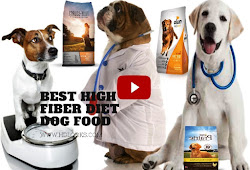 High fiber diet dog food, Cheap dog foods that is essentials for your Dog.