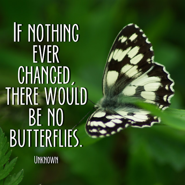 If nothing ever changed, there would be no butterflies. - Unknown