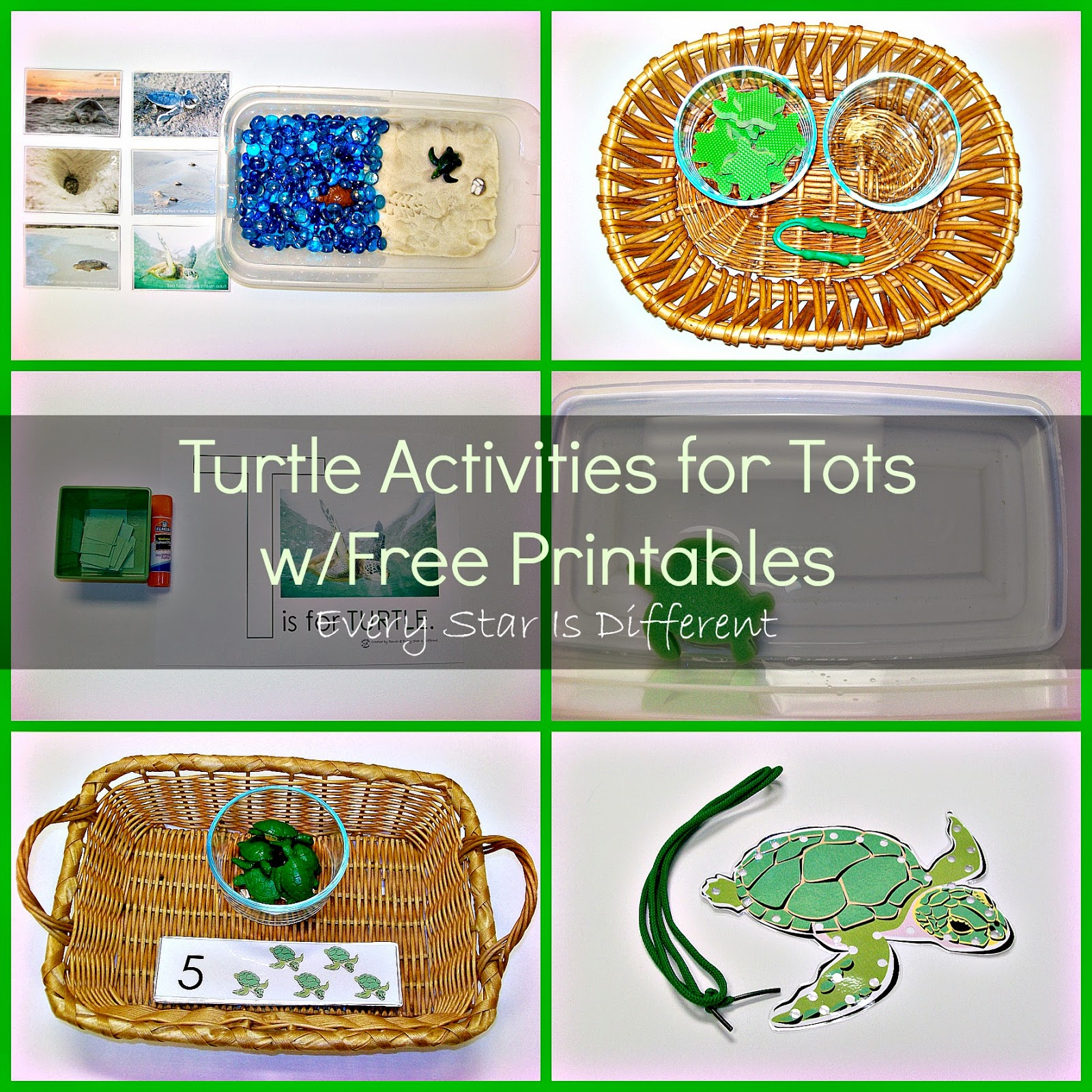 Sea Turtle Activities for Tots & Preschoolers
