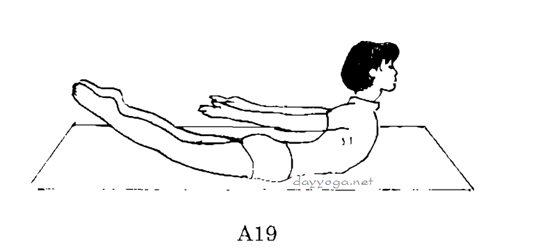tu-the-con-chau-chau-A19