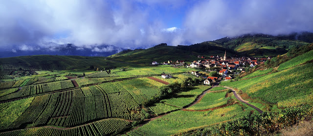 Niedermorschwihr Vineyards in Alsace, France. Photo copyright: CRTA - Zvardon. Unauthorized use is prohibited.